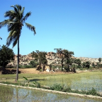 Hampi - Anegundi